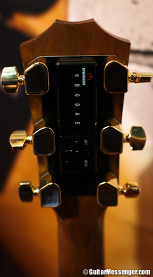 Tronical Tune Gibson