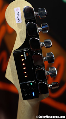Tronical Tune Stratocaster