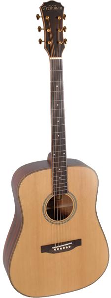 Freshman Guitars Songwriter Series 1